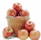 需低溫宅配最多兩組 C749202 智利富士蘋果 2.4公斤