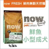 Now〔鮮魚無穀小型犬配方,6磅,加拿大製〕(活動優惠價)