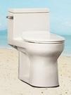 【麗室衛浴】 HCG 頂客系列 單體馬桶 C-333 客戶升級托售 只有1只全新