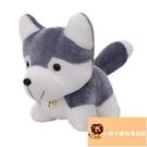 小寵物哈士奇玩偶禮物公仔毛絨玩具二哈玩偶禮物可愛【小獅子】
