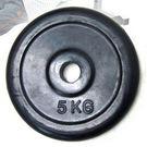 (5公斤)包膠槓片(2片裝/共10公斤)
