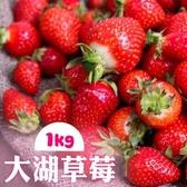 【南紡購物中心】家購網嚴選-鮮豔欲滴大湖香水草莓1公斤X4盒(1號果)