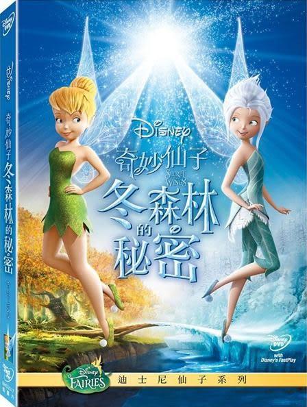 奇妙仙子:冬森林的秘密 DVD (音樂影片購)