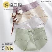 5條|孕婦內褲純棉低腰孕晚期孕早期短褲內衣女【貼身日記】