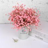 勿忘我干花花束客廳裝飾家居擺設小清新天然滿天星干花花束 露露日記
