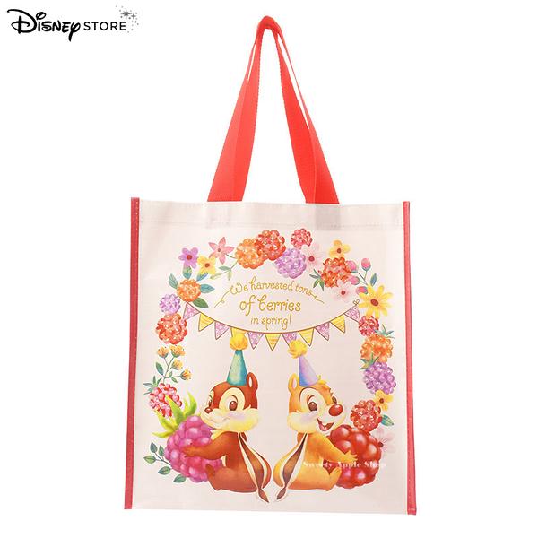 日本 Disney Store 迪士尼商店 限定 奇奇蒂蒂 Hello Chip and Dale 購物袋