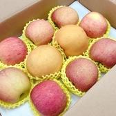 【新鮮水果】日本青森蜜富士蘋果8顆+台灣高山大水梨2顆共10顆(禮盒)