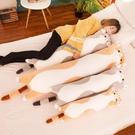 貓咪長條抱枕床上成人懶人黃貓長抱枕毛絨趴趴枕雙人兒童靠墊 ciyo黛雅