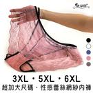 超加大尺碼性感雙腰頭 柔美浪漫蕾絲內褲/3XL.5XL.6XL /立體剪裁/女內褲【 唐朵拉 】(627)