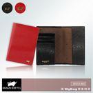 BRAUN BUFFEL 小金牛 護照夾 奧菲莉亞P系列 3卡 馬毛紋 任選 BF613-801 得意時袋