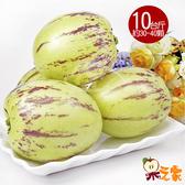 【果之家】澎湖特級楊梅果(人參果)10台斤1箱(約20-40顆)