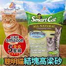 【🐱🐶培菓寵物48H出貨🐰🐹】美國Smart Cat聰明貓》第一結塊高梁砂-5磅/2.25公斤(可超取)