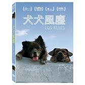 【停看聽音響唱片】【DVD】犬犬風塵
