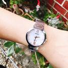 SEIKO日本精工Lady's名媛時尚太陽能腕錶V115-0CT0P/SUP381P1公司貨/禮物/情人節