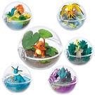 寶可夢 飼育生態球 擺飾 盒玩 第三代 隨機出貨 Pokemon 神奇寶貝 日本正品 該該貝比日本精品 ☆