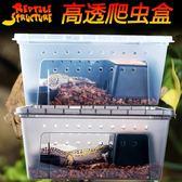 爬蟲爬寵蜘蛛守宮蜥蜴蝎子飼養盒