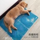寵物墊子夏 寵物冰墊夏季降溫狗狗涼墊子泰迪涼席散熱涼墊用品墊大號夏天窩墊