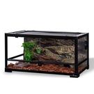 陸龜飼養箱蜥蜴爬寵熱帶雨林植物生態缸爬蟲...