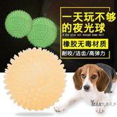 寵物玩具 寵物玩具狗狗玩具金毛發聲玩具中型犬大型犬潔齒玩具發光球夜光球 聖誕交換禮物