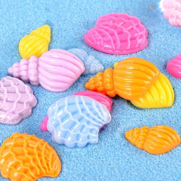 CARMO彩色海螺/貝殼微景觀 組盆裝飾【A042002】