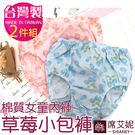 棉質女童內褲 草莓小包褲 (二入組) 台灣製造 No.8007-席艾妮SHIANEY