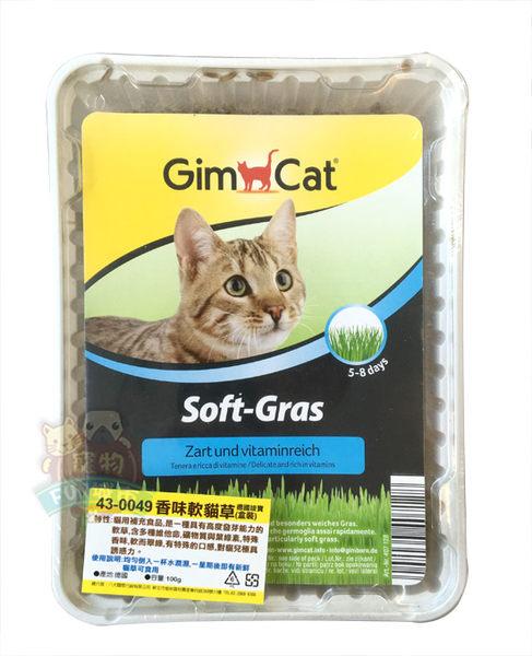*~寵物FUN城市~*《德國竣寶GIMPET》 香味軟貓草【100g盒裝】 (貓零食 ,寵物,駿寶)