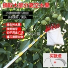 摘果器 摘果神器伸縮桿摘果器不銹鋼高空采摘水果摘柿子琵琶蘋果橘子桿