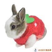 寵物保暖草莓兔子衣服豚鼠荷蘭豬寵物毛絨衣服茶杯犬【公主日記】