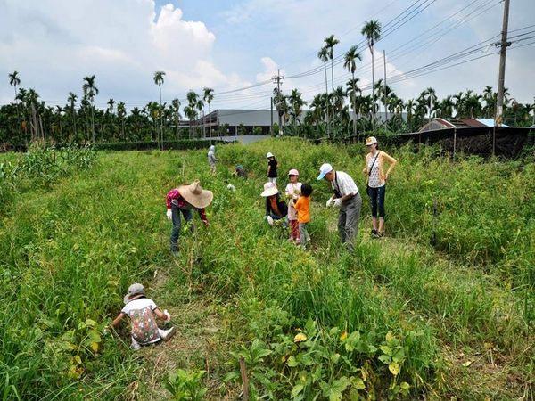 [屏東]不一樣鱷魚生態休閒農場-豐富單人農業體驗一日遊