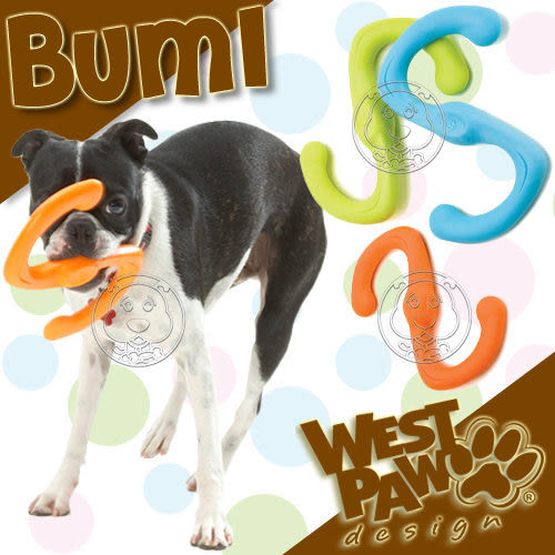 【 zoo寵物商城 】美國West Paw Design《Būmi - S型》8吋 耐咬拉扯浮水玩具