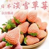 【果之蔬-全省免運】日本夢幻淡雪特大白草莓x1箱(2盒/箱 每箱約22-44入)