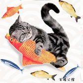 貓咪玩具魚仿真逗貓棒  百姓公館