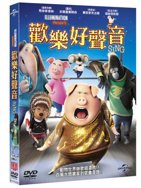 歡樂好聲音 DVD (音樂影片購)