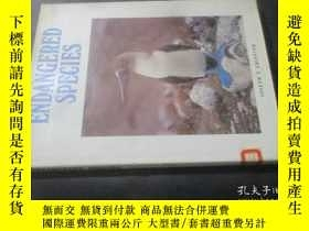 二手書博民逛書店Endangered罕見Species 瀕危物種 英文原版8開精