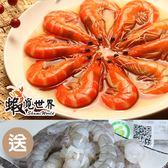 (5包)大尾紹興醉蝦(20尾/400g)+贈超大顆蝦仁(約11顆/150g) 含運組