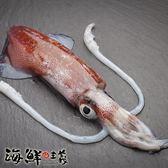 【海鮮主義】透抽(小卷) 600g/包