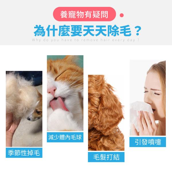 《自動退毛!按摩沾珠》寵物除毛梳 寵物針梳 寵物梳子 寵物梳 除毛刷 脫毛梳 貓梳子 狗梳子