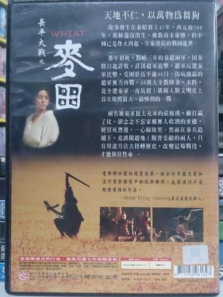 挖寶二手片-X02-035-正版DVD-華語【長平大戰之麥田】-范冰冰 黃覺 王志文 王學祈(直購價)