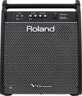 【金聲樂器】 Roland PM-200 180W 電子鼓音箱 PM200