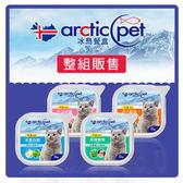 冰島貓餐盒 100g*24盒組(C102E01-1)
