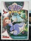 挖寶二手片-0B01-280-正版DVD-動畫【小公主蘇菲亞:奇幻之旅】-迪士尼(直購價)