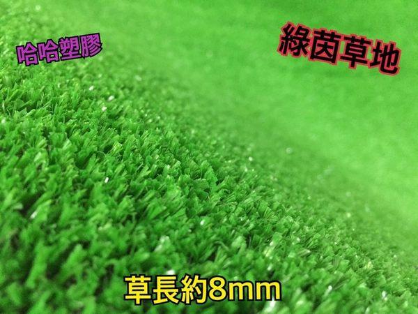 人工草皮 草地毯 人造草 高爾夫草 人造草皮 塑膠草 台塑南亞正公司貨 工廠直營批發價