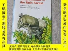 二手書博民逛書店Baby罕見Animals in the Rain Forest