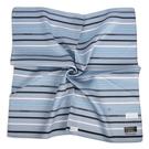TRUSSARDI簡約拼色直紋純綿男士帕巾(灰藍色)989009-141
