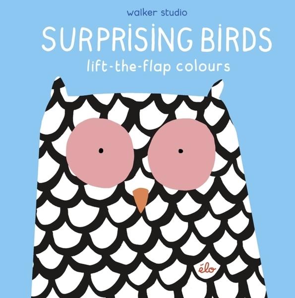 Surprising Birds:Lift-The-Flap Colours 繽紛的鳥兒 精裝翻翻書
