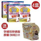 【惠氏藻油DHA4盒】 送 孕哺兒卵磷脂膠囊(90粒) X1