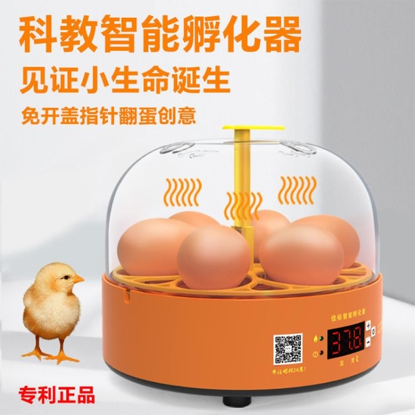 【在台現貨】110V 實驗孵蛋器小雞孵化器小型家用全自動雞蛋孵化箱兒童智慧孵化機
