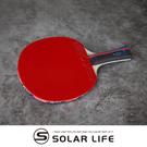 蝴蝶牌 BUTTERFLY 桌球拍負手板乒乓球RDJ刀板S1 幻象-1.