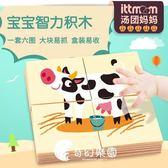 拼圖-美國TOI兒童木質拼圖大塊 寶寶早教啟蒙積木玩具-奇幻樂園