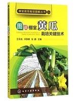 二手書博民逛書店 《棚室蔬菜栽培圖解叢書--圖說棚室黃瓜栽培關鍵技術》 R2Y ISBN:7122221393